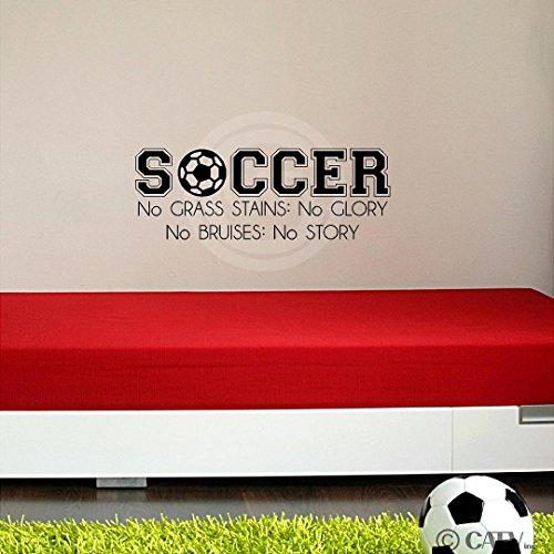 Soccer No Grass Stains No Glory No Bruises No Story Vinyl