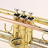 Legacy Intermediate Trumpet TR750 with Deluxe