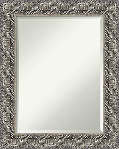 Amanti Art Bathroom Mirror Medium Large, Fits Standard 24 to 30 Cabinet, Silver Luxor: Outer Size 24 x 30