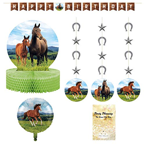 Pony Horse Party Decorations, Birthday, Wild Horse Design, 4 Pieces, Centerpiece, Banner, Hanging Cutouts and Balloon]()