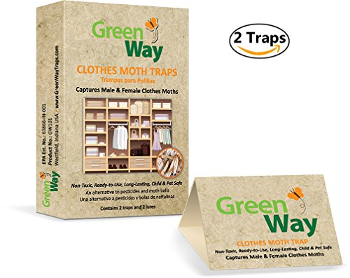 Clothes Moth Trap (GreenWay Clothes Moth Traps (2 traps per box) - pheromone attractant, eco-friendly, kid and pet safe)