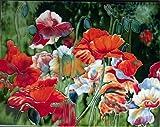 Continental Art Center HD 035 Poppy Flower Field Art Tile, 11 by 14-Inch