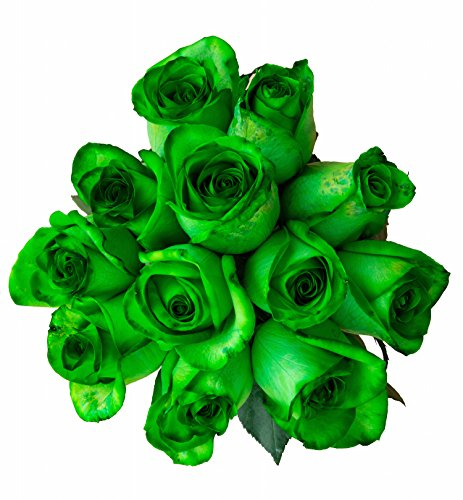 12 Stems - Fresh Cut Tinted Green Roses from Flower Explosion