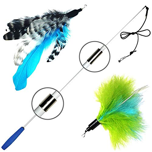 Pet Fit For Life Retractable Wand with 2 Feathers For Your Cat and Kitten – Cat Toy Interactive Cat Wand