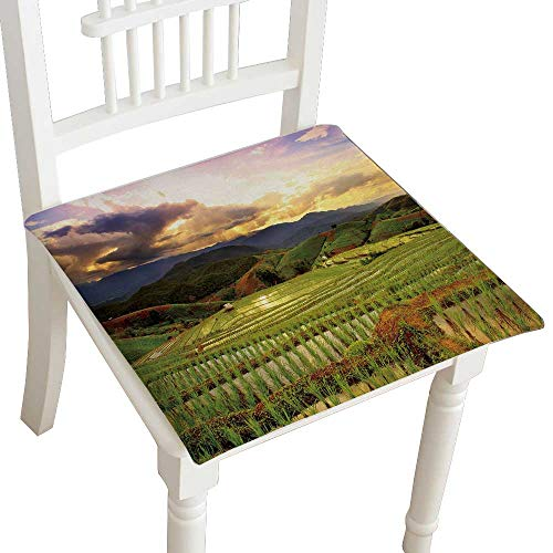 Cheap  HuaWuhome Chair Pads Squared Seat Green Terraced Rice Field in Chiangmai Thailand..