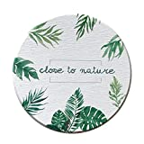 Aoruisier 1pcs Ins Diatom Mud Absorbent Coaster Environmental Plant Waterproof Round Leaves Absorbent Pad