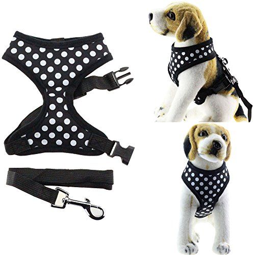 Bolbove Pet Adjustable Lovely Dots Mesh Harness and Leash Set for Cats & Small Dogs (Medium, Black)