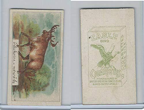 B116-151 BAT Eagle Cigarettes, Animals & Birds, 1912, 21 Moose