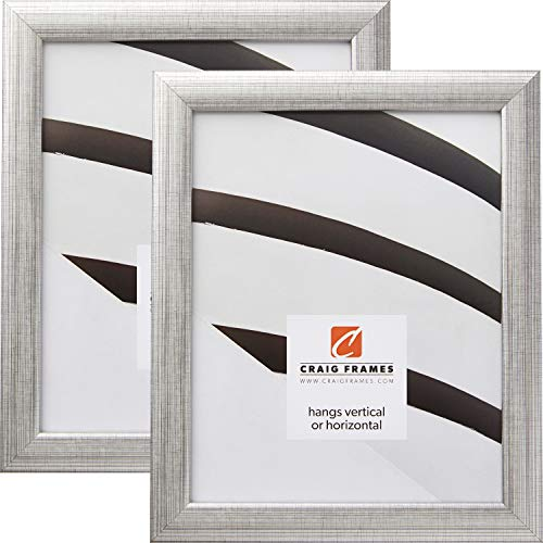 Craig Frames 23247944 24 x 32 Inch Picture Frame, Scratched Silver, Set of 2 (Picture Frame 24 X 32 Silver)