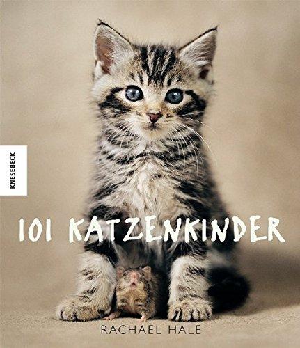 101 Katzenkinder