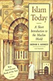 Islam Today: A Short Introduction to the Muslim World (Introductions to Religion)