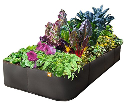 Victory 8 Fabric Raised Garden Bed, 3x6 Feet (Patio With Raised Beds)