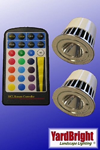 2 Pack RGB Bulb With Remote