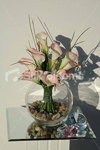 Claro rosa marfil pantalla de gato con pecera mesa Lily Beauty jarrón: Amazon.es: Hogar