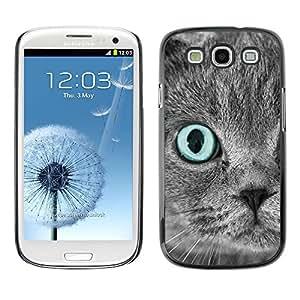 PC/Aluminum Funda Carcasa protectora para Samsung Galaxy S3 I9300 Scottish Fold Grey Blue Eye Cat Persian / JUSTGO PHONE PROTECTOR