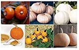 buy David's Garden Seeds Collection Set Pumpkin OQ0651 (Multi) 6 Varieties 200 Seeds (Non-GMO, Open Pollinated, Heirloom, Organic) now, new 2020-2019 bestseller, review and Photo, best price $22.95
