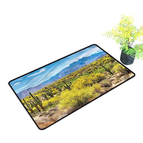 Funny Door mats Outdoor Cactus,Landscape of Desert for Garage Entrance,H23xW35 inch (Desert Beige Oval Braided Rug)