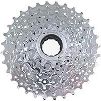 9-voudig SCHROUB-ZK -MFEX9-11-32 Z -E-Bike -verchroomd (SunRACE)