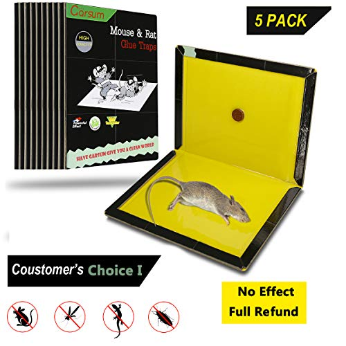 Garsum Mouse Glue Boards,Rat Sticky Traps for Mice,Large Rat Glue Pads,Extra Sticky Traps with Peanut Butter Large Capture Area,Catch Mouse Indoor and Outdoor (5 Pack/Black XL) - Rat Glue Boards
