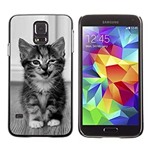 Graphic4You Baby Cat Animal Design Hard Case Cover for Samsung Galaxy S5