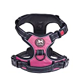 Best Dog Harness No Pulls - PoyPet No Pull Dog Harness, No Choke Front Review