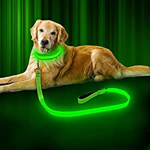 BSEEN LED Dog Leash – USB Rechargeable 47.2 inch 120 cm Reflective Night Safety Pet Leash LED Strip to Keep You and Your Dog Safe