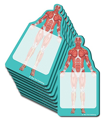 Anatomy Sticky Notes (Muscles 10 pack) ()