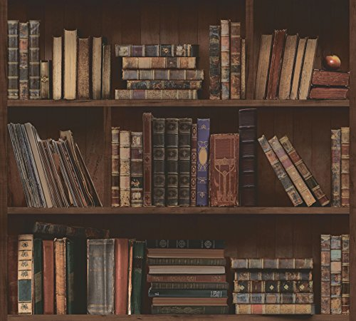 Library Book Bookshelves Antique Bookcase Self-Adhesive Peel-Stick Wallpaper (VBS1401(3.2' x 9.8'))