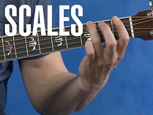 Beginner Guitar Lesson 3