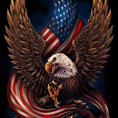5D DIY Full Drill Diamond Painting Eagle Flag Cross Stitch Embroidery Kit Home Décor by Sundengyuey ()