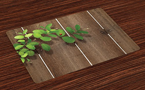 Lunarable Ladybugs Place Mats Set of 4, Ladybug on Fresh Green Leaves Wooden Planks Timber Hardwood Rustic Country Life, Washable Fabric Placemats for Dining Room Kitchen Table Decoration, Umber Green