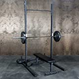 Squat Rack + Pullup Bar by Fringe Sport / 6' x 4' Footprint - 1,000lb Weight Capacity / Strength & Conditioning Exercises