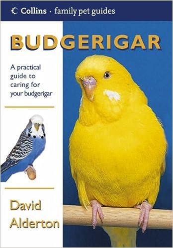 Budgerigar (Collins Family Pet Guide): Amazon co uk: David