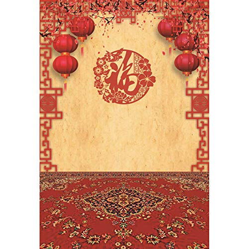 AOFOTO 4x6ft Chinese Spring Festival Backdrop for Pictures Traditional Paper-Cut Pane Lanterns Calyx Canthus Carpet Photography Background Welcome Happy New Year Family Gathering Photo Studio Drape