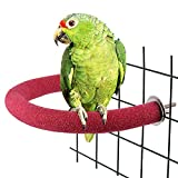 Urijk Parrot Perches Bird Stand, Real Pumice to Trim Nails & Beak, Non-Toxic Wood Quartz Sand Branches Nail Perch for Small Medium Birds Cockatiel Parakeet Conure Cage Accessory