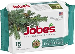 product image for Jobes 01611 Spikes-Evergreen