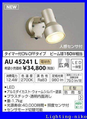 コイズミ照明 アウトドアスポットライト AU45241L B01GZ0YBVM 15504