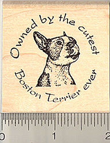 Boston Terrier Rubber Stamp, Owned by the cutest