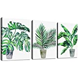"""Green Leaf Wall Art Tropical Botanical Plants Vase Canvas Pictures Modern Canvas Artwork Minimalism Leaf Conemporary Wall Art Prints for Bedroom Bathroom Living Room Wall Decor 12"""" x 16"""" x 3 Pieces"""