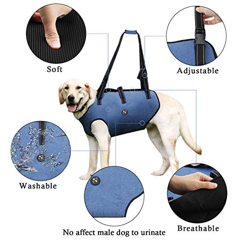 COODEO Dog Lift Harness, Pet Support & Rehabilitation Sling Lift Adjustable Padded Breathable Straps for Old, Disabled, Joint Injuries, Arthritis, Loss of Stability Dogs Walk (Large)