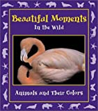 Beautiful Moments in the Wild, , 097077687X