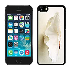 Diy Conch Shell Iphone 5c Case Black Mobile Phone Cover