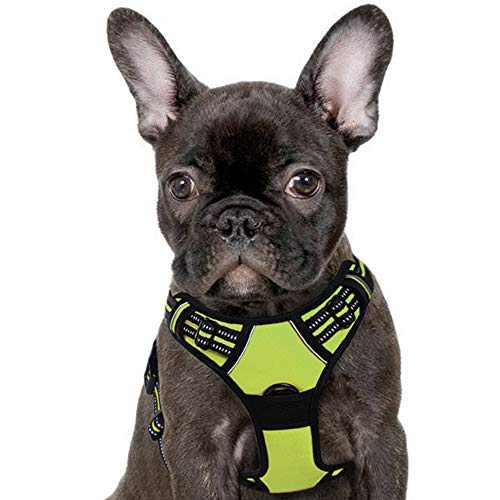Eagloo Dog Harness No Pull, Walking Pet Harness with 2 Metal Rings and Handle Adjustable Reflective Breathable Oxford Soft Vest Easy Control Front Clip Harness Outdoor for Small Dogs Green