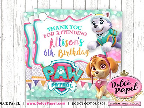 Amazon 10 Paw Patrol Girl Skye And Everest Pink Teal