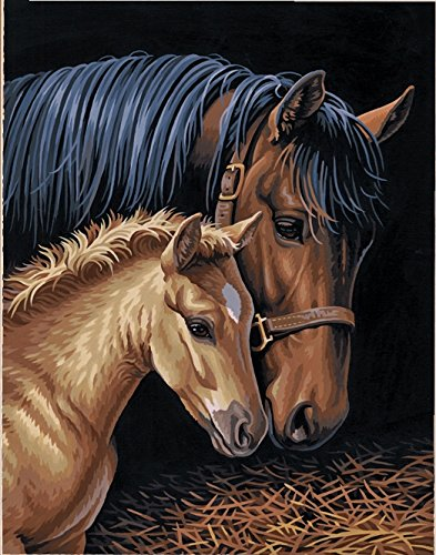 Dimensions Horse Family Paint by Numbers for Adults, 11'' W x 14'' ()