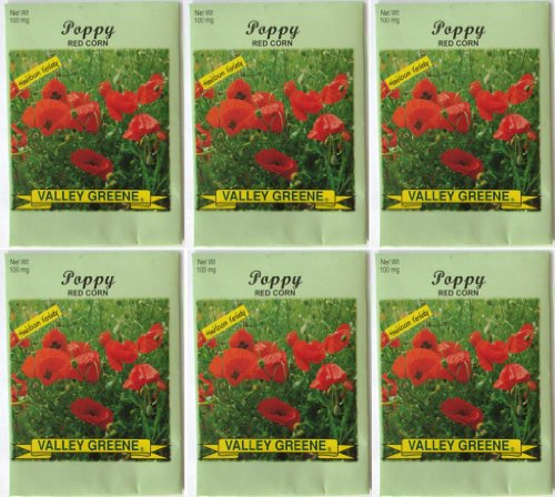 Valley Greene (6 Pack) Heirloom Variety Red Corn Poppy Flower Seeds 100 mg/package Non GE Seeds