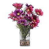 Vickerman F12198 Everyday Coreopsis Floral