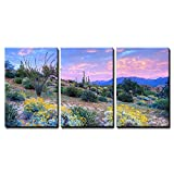 wall26 - 3 Piece Canvas Wall Art - Blooming Sonoran Desert at Sunset. - Modern Home Decor Stretched and Framed Ready to Hang - 16''x24''x3 Panels