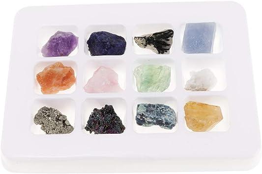 12 Piezas Caja de Muestra de Minerales y Rocas Naturales Regalo de Cumpleaños Navidad para Niños: Amazon.es: Juguetes y juegos