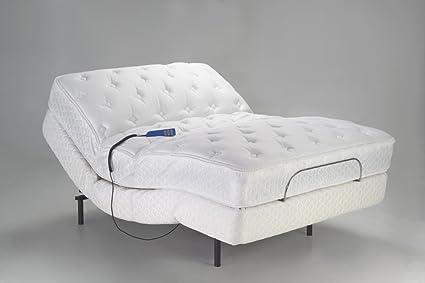 Amazon.com: Pro Motion Electric Adjustable Bed, 450 lb. Capacity